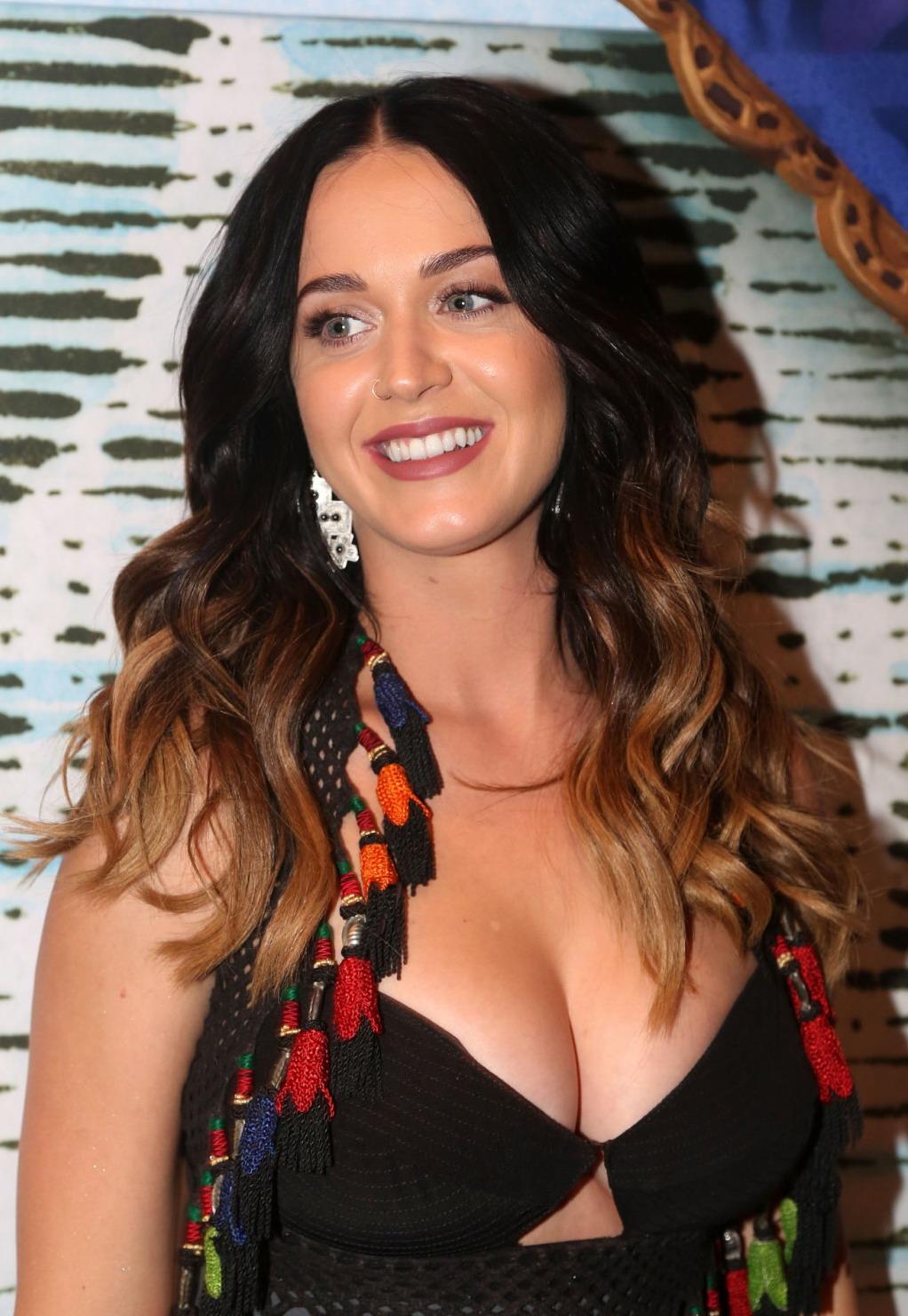 Katy Perry Sexy (24 Photos)