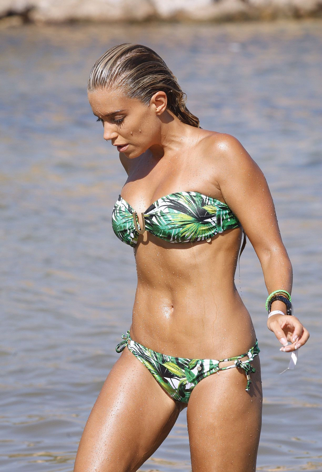 Sylvie Meis Bikini Nude Photos 22