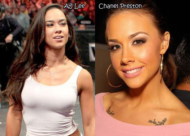 17.AJ Lee Chanel Preston
