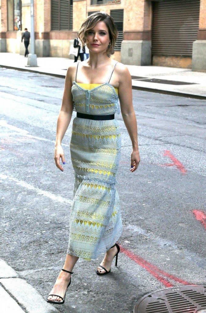 Sophia Bush See Through (47 Photos)