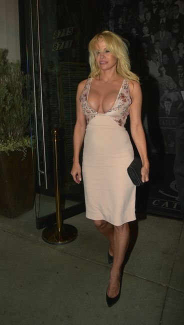 Pamela Anderson Sexy (12 Photos) | #TheFappening