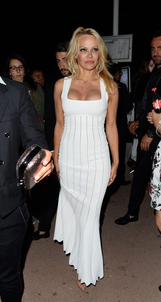 Pamela Anderson Sexy (29 Photos)