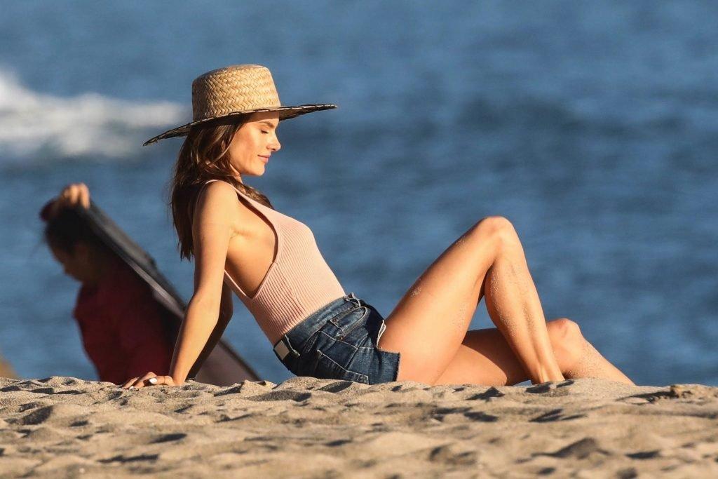 Alessandra Ambrosio Sexy (73 Photos)