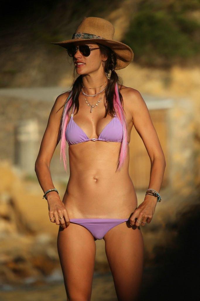 Alessandra Ambrosio Sexy (91 New Photos)