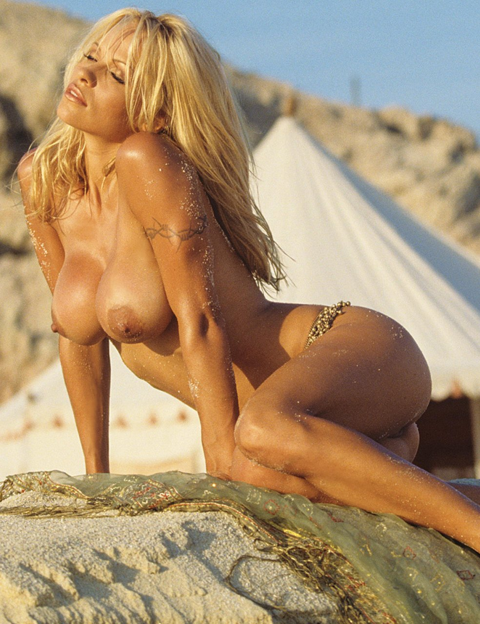 from Sawyer pamela anderson naked in playboy torrent