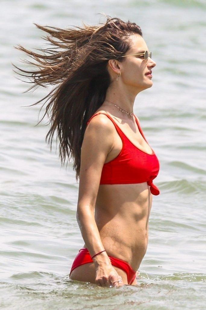 Alessandra Ambrosio Sexy (18 Photos)