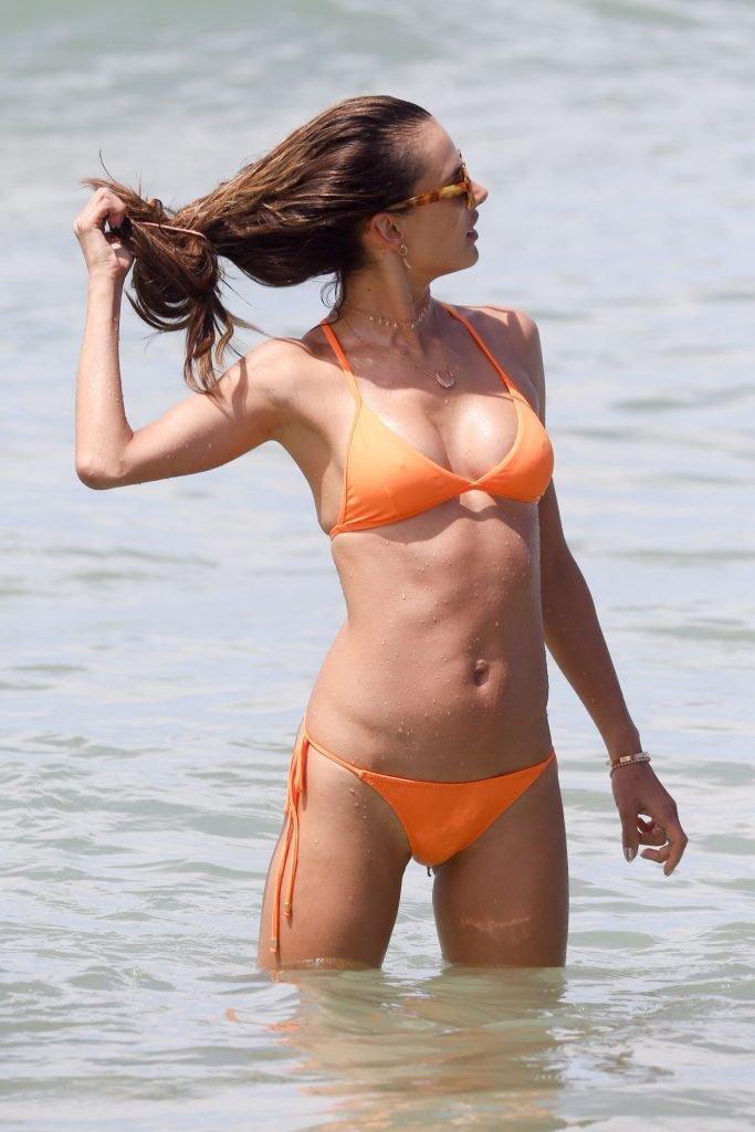 Alessandra Ambrosio Sexy (37 Photos)