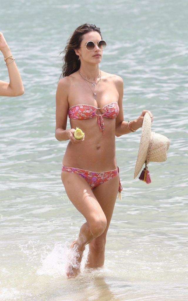 Alessandra Ambrosio Sexy (17 Photos)