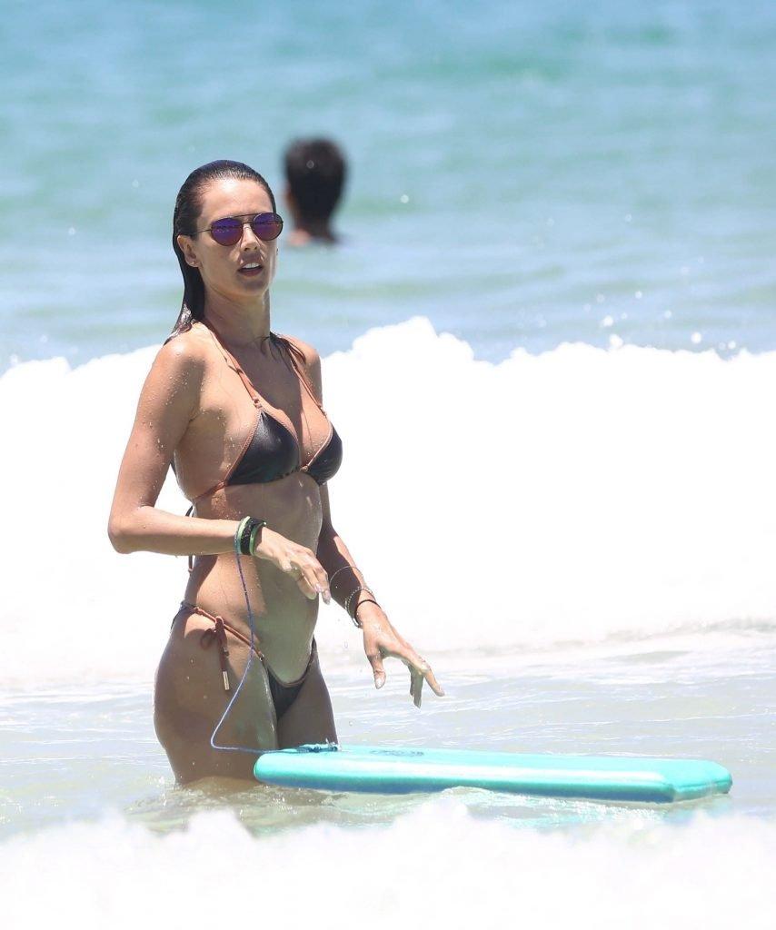 Alessandra Ambrosio Sexy (67 Photos)