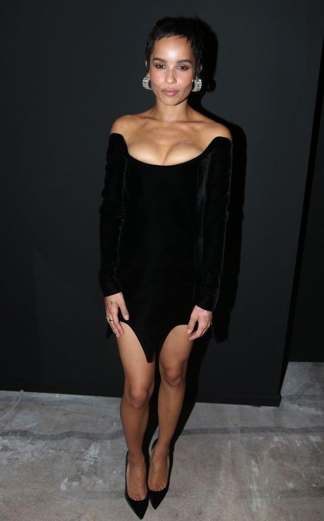 Zoe Kravitz Sexy (7 Photos)