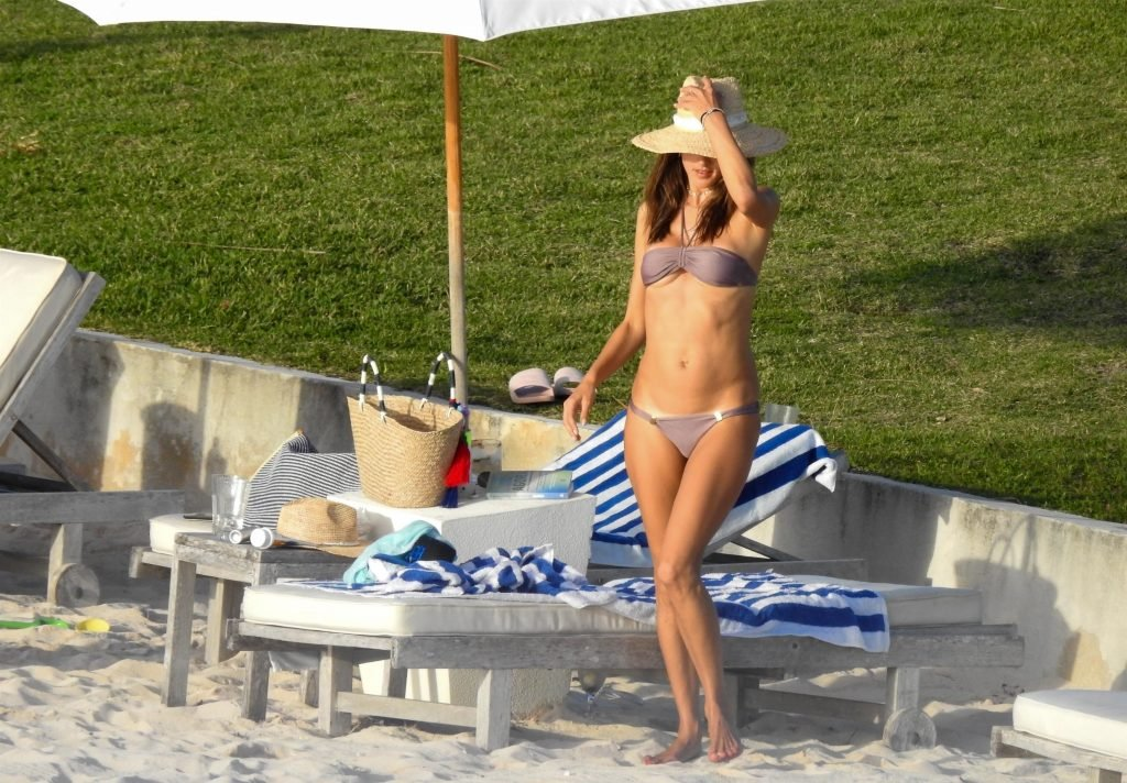 Alessandra Ambrosio Sexy (51 New Photos)
