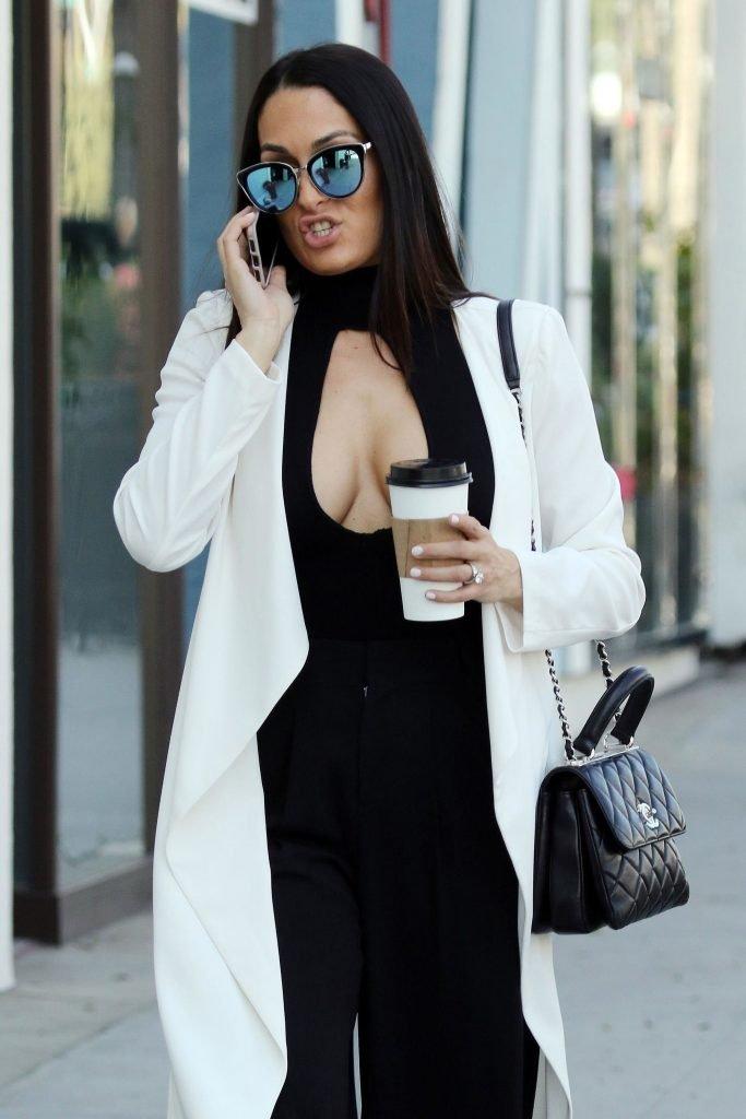 Nikki Bella Sexy (24 Photos)