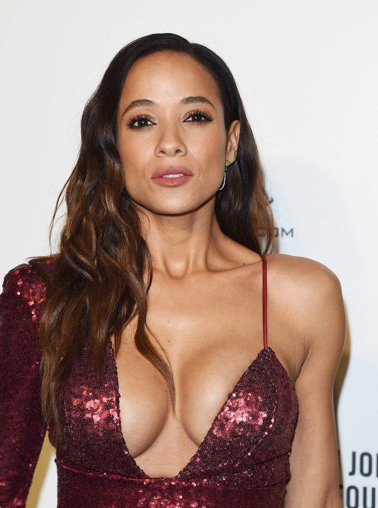 Dania Ramirez Sexy (28 Photos)