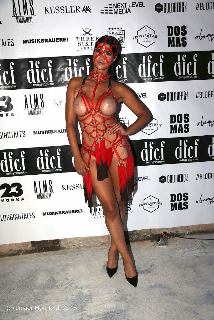 Micaela Schäfer Topless (12 Photos)