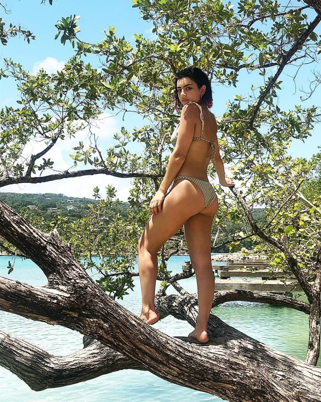 Charli XCX Sexy (32 Photos)