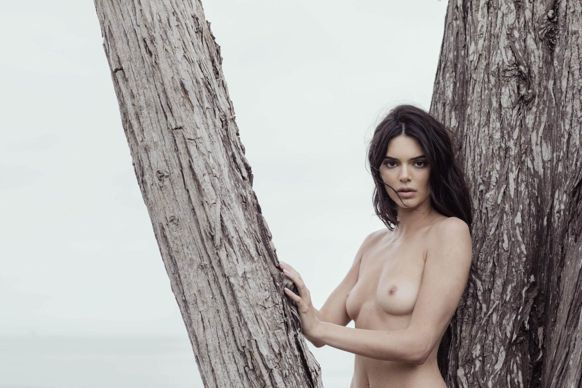 Kendall-Jenner-Nude-TheFappeningBlog.com-14.jpg