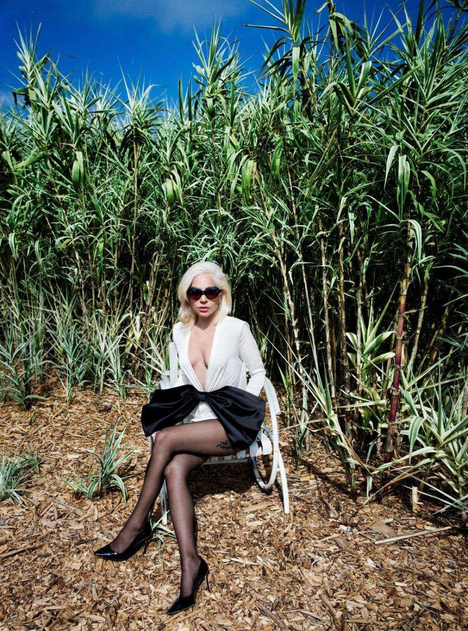 Lady Gaga Sexy (8 Photos)