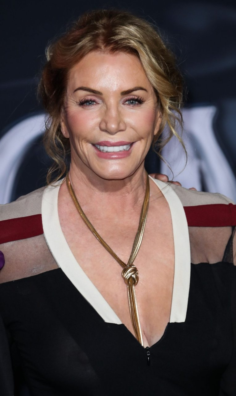 Shannon Tweed See Through (48 Photos) | #TheFappening