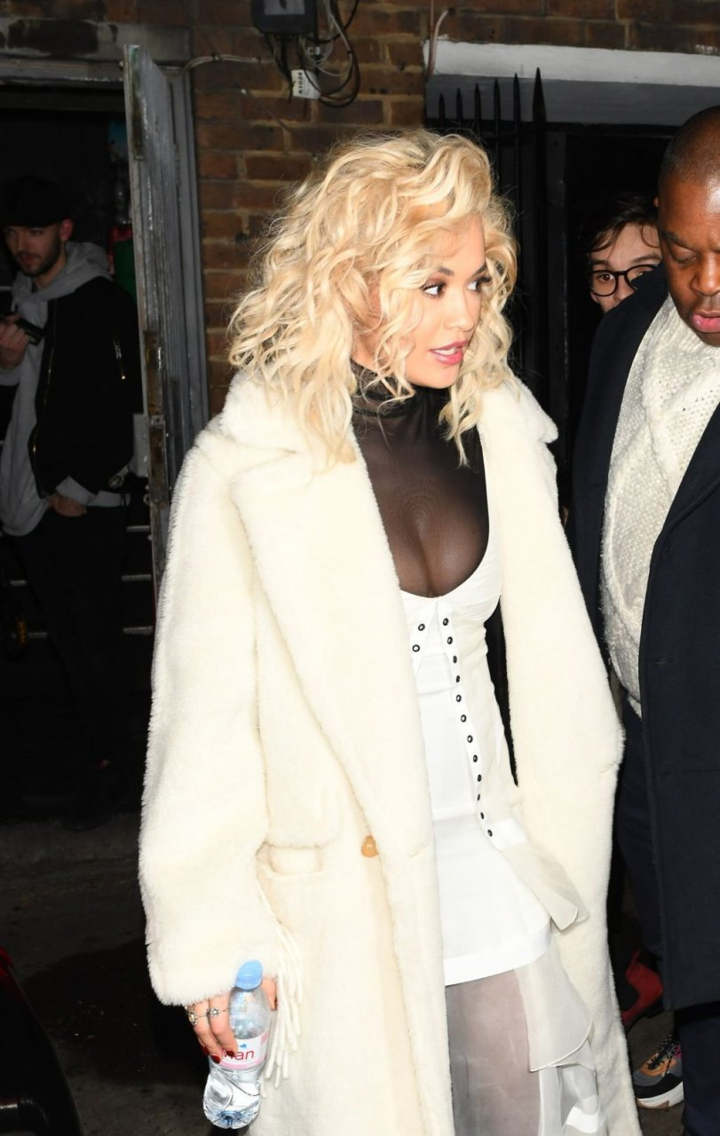 Rita Ora Sexy (46 Photos)