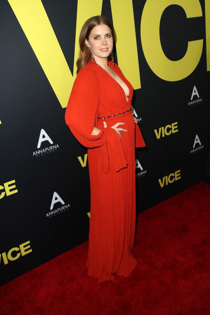 Amy Adams Sexy (29 Photos)