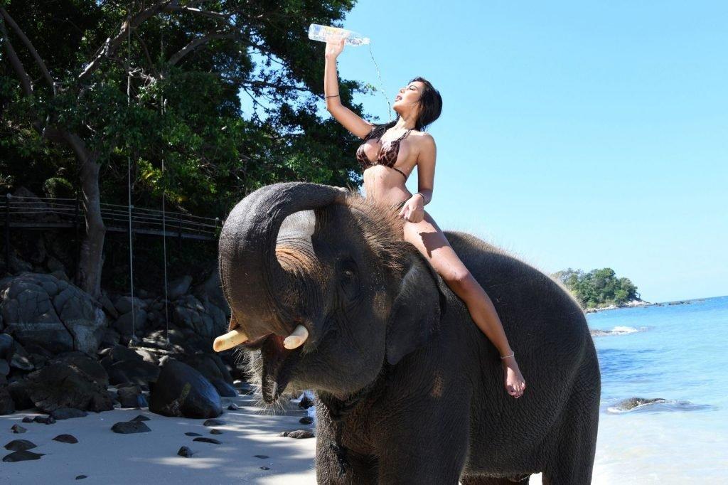 Kasa Suda Sexy (15 Photos + GIFs & Video)