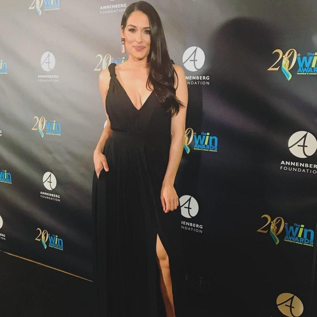 Nikki Bella Sexy (57 Photos)