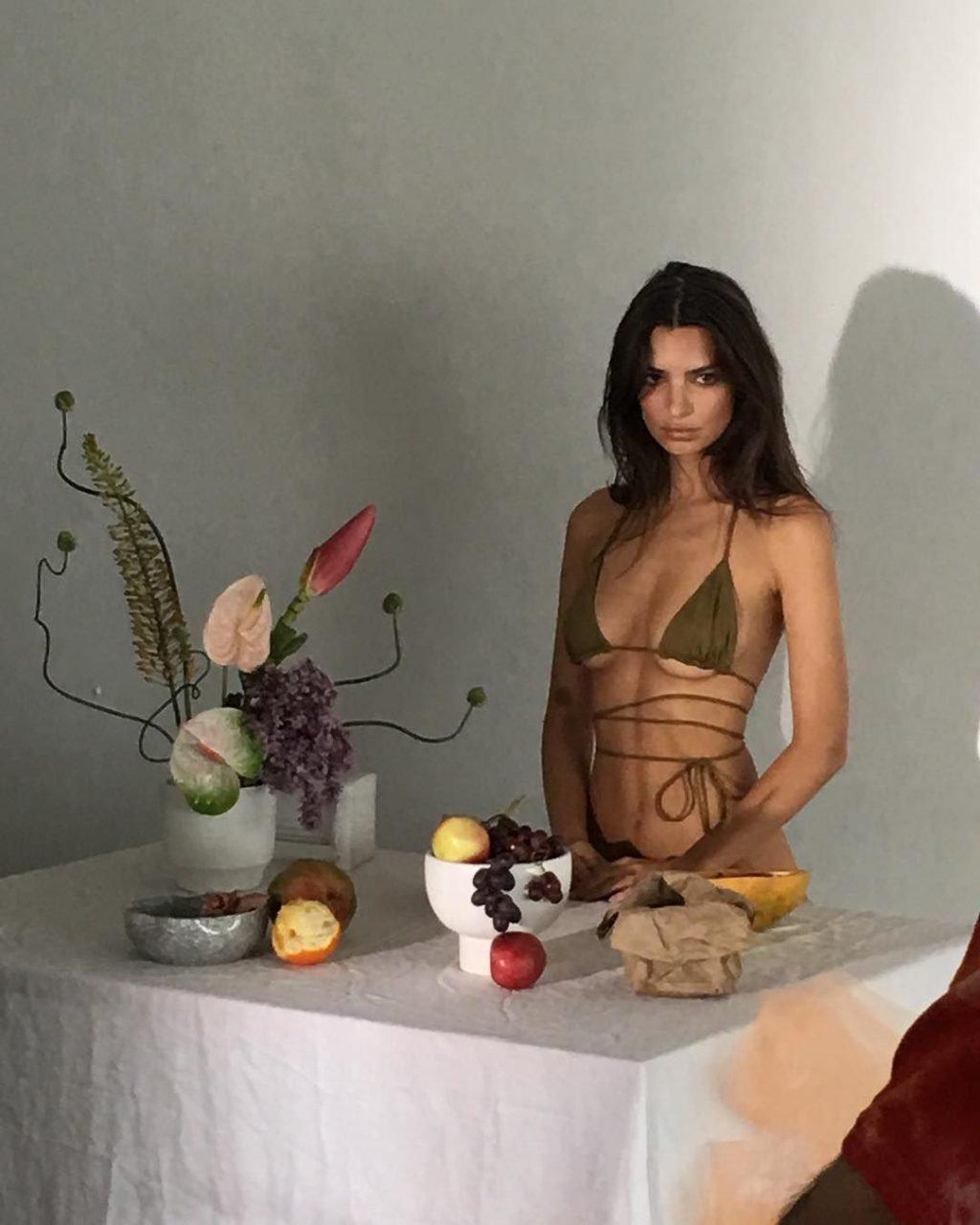 Emily Ratajkowski Sexy (30 Photos)