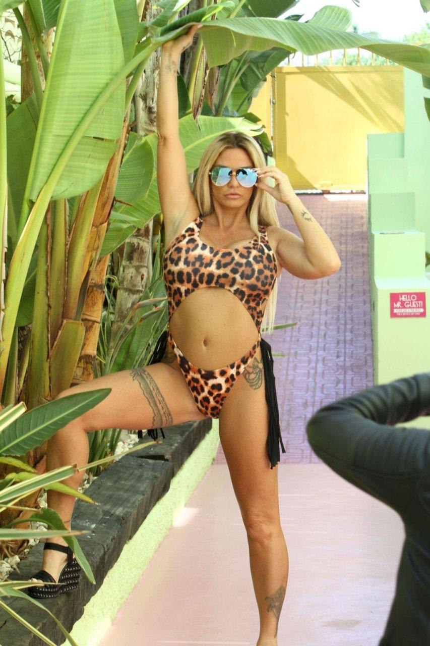 Katie Price Sexy (25 Hot Photos)