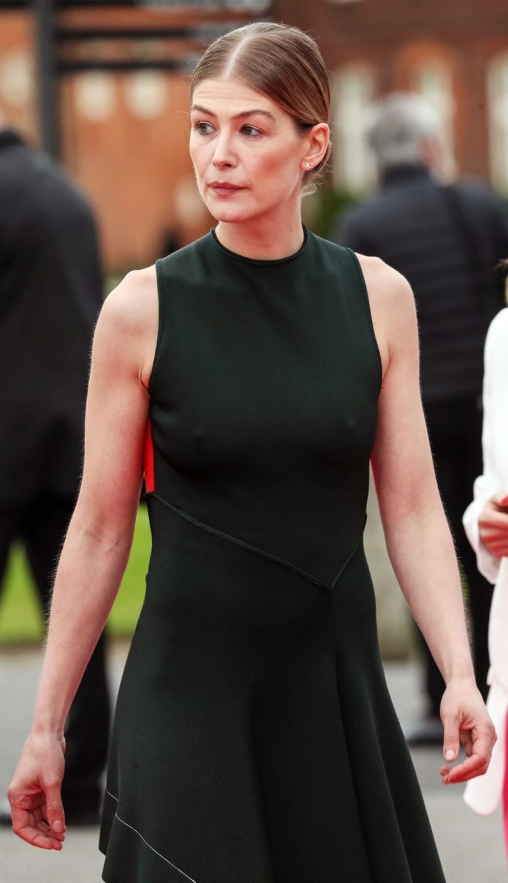 Rosamund Pike Sexy (16 Photos) | #TheFappening