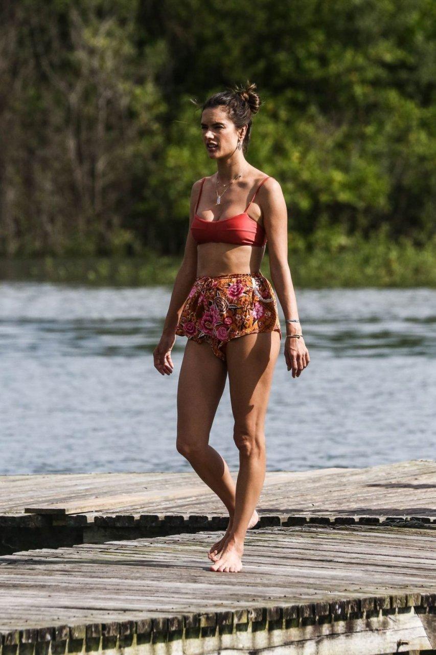 Alessandra Ambrosio Sexy (82 New Photos)