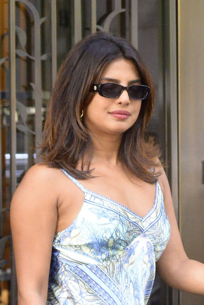 Priyanka Chopra Sexy (14 New Photos)