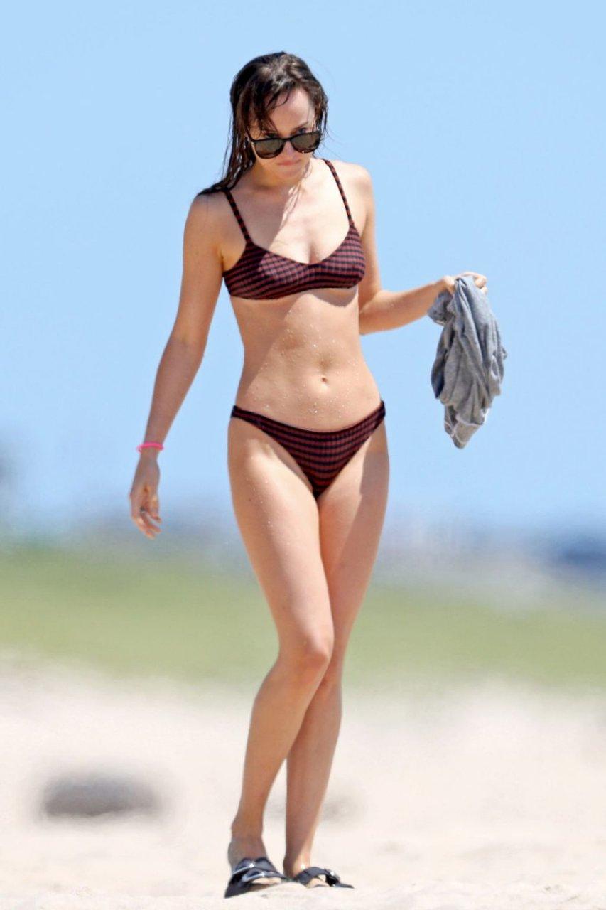 Dakota Johnson Sexy (49 Photos)