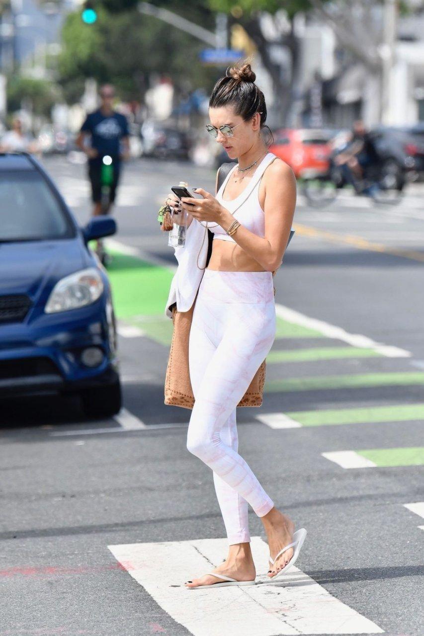 Alessandra Ambrosio Sexy (65 New Photos)