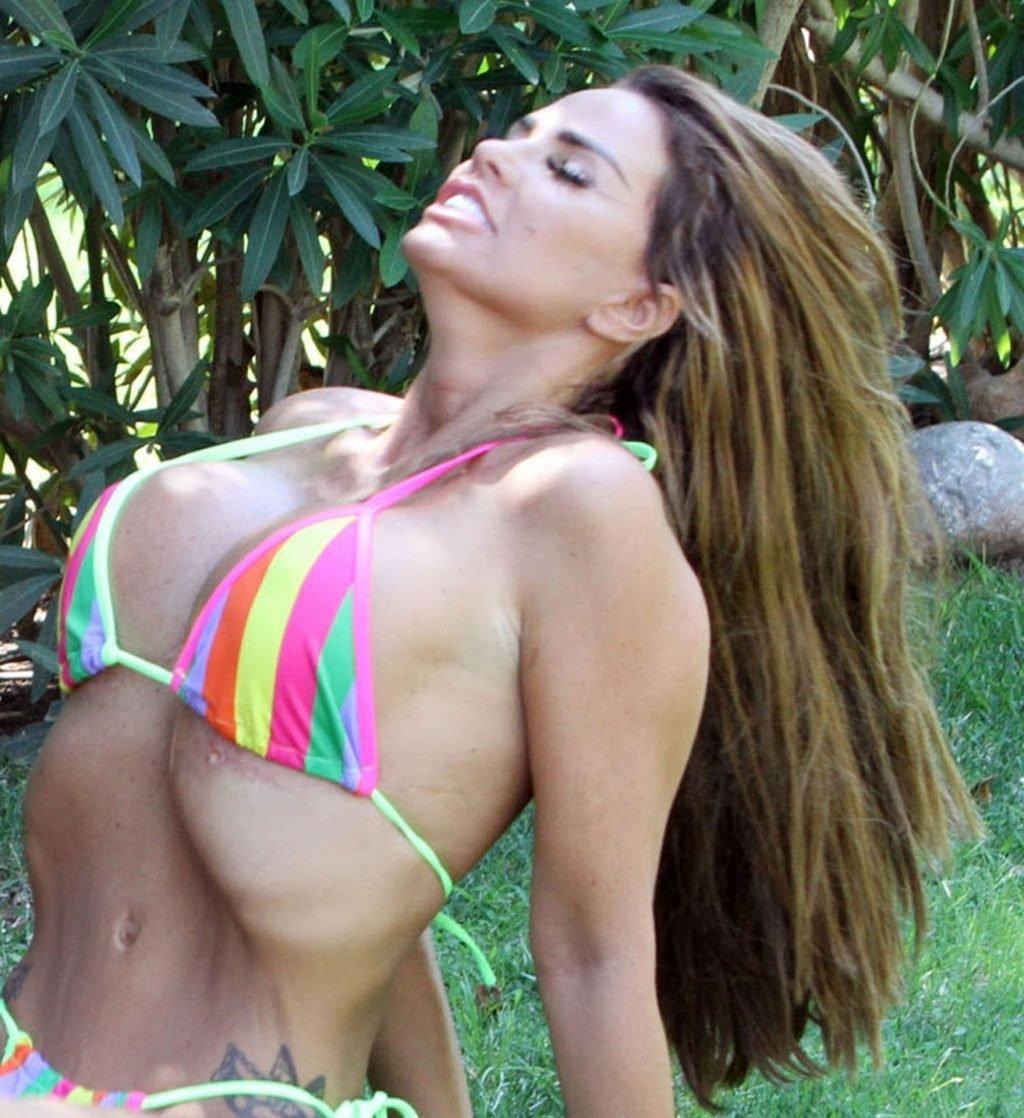 Katie-Price-Nude-Sexy-TheFappeningBlog.com-66-1024x1118.jpg