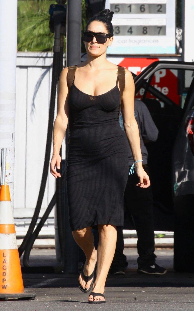 Nikki Bella Sexy (15 Hot Photos)