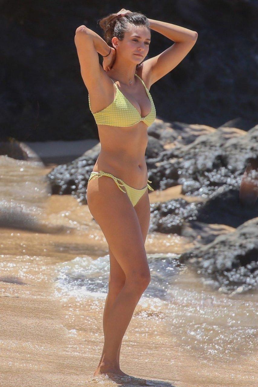 Nina Dobrev Sexy (22 Photos)