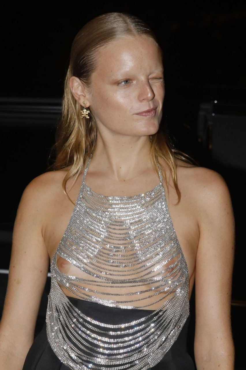 Hanne Gaby Odiele See Through (13 Photos)
