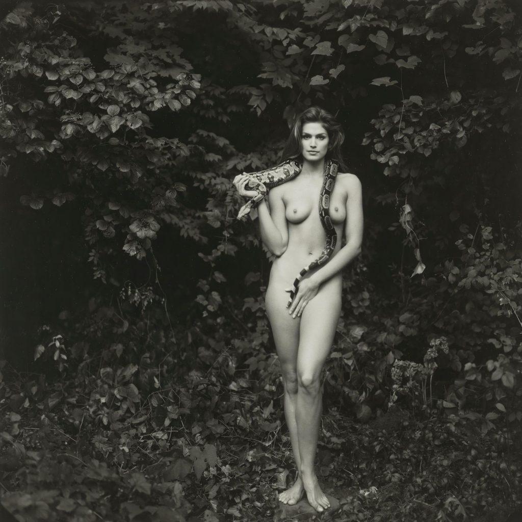 Cindy Crawford Nude (2 Hot Photos)