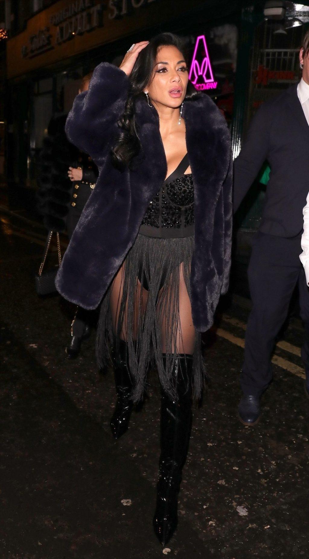 Nicole Scherzinger Sexy (45 New Photos)