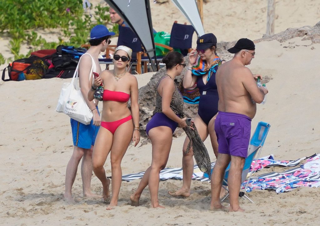 Rita Ora Sexy (31 Hot Photos)
