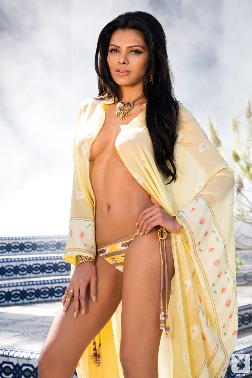 Sherlyn Chopra Nude (46 Photos)