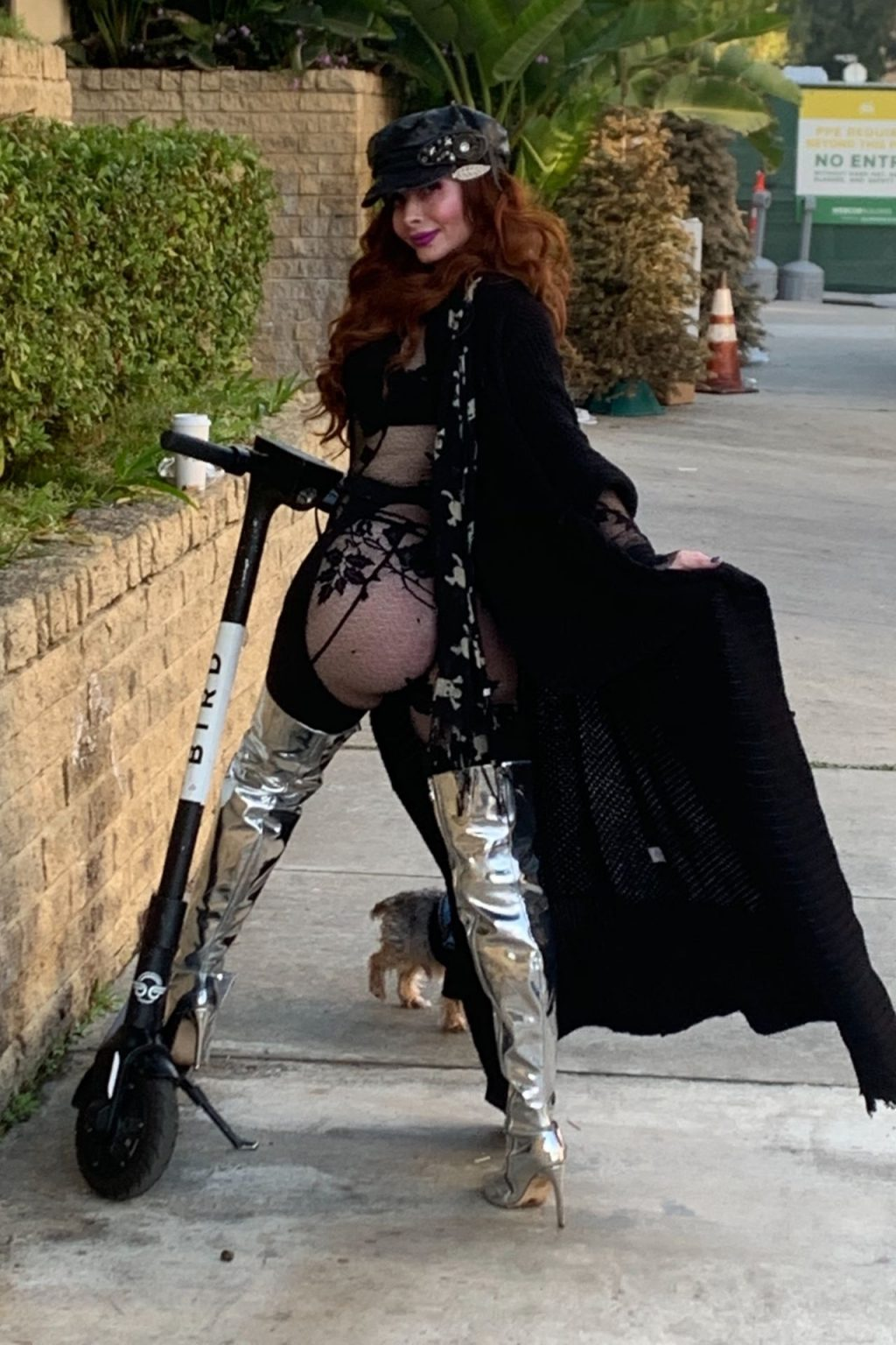 Phoebe Price Shows Her Butt in Los Angeles (13 Photos)