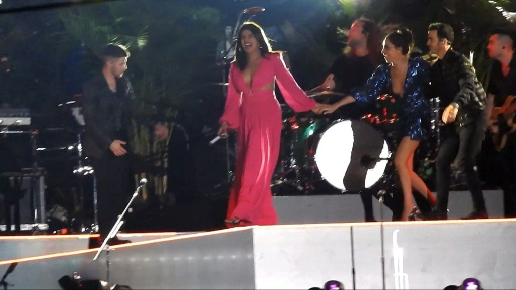 Sophie Turner, Priyanka Chopra, Danielle Jonas Sexy (20 Photos)