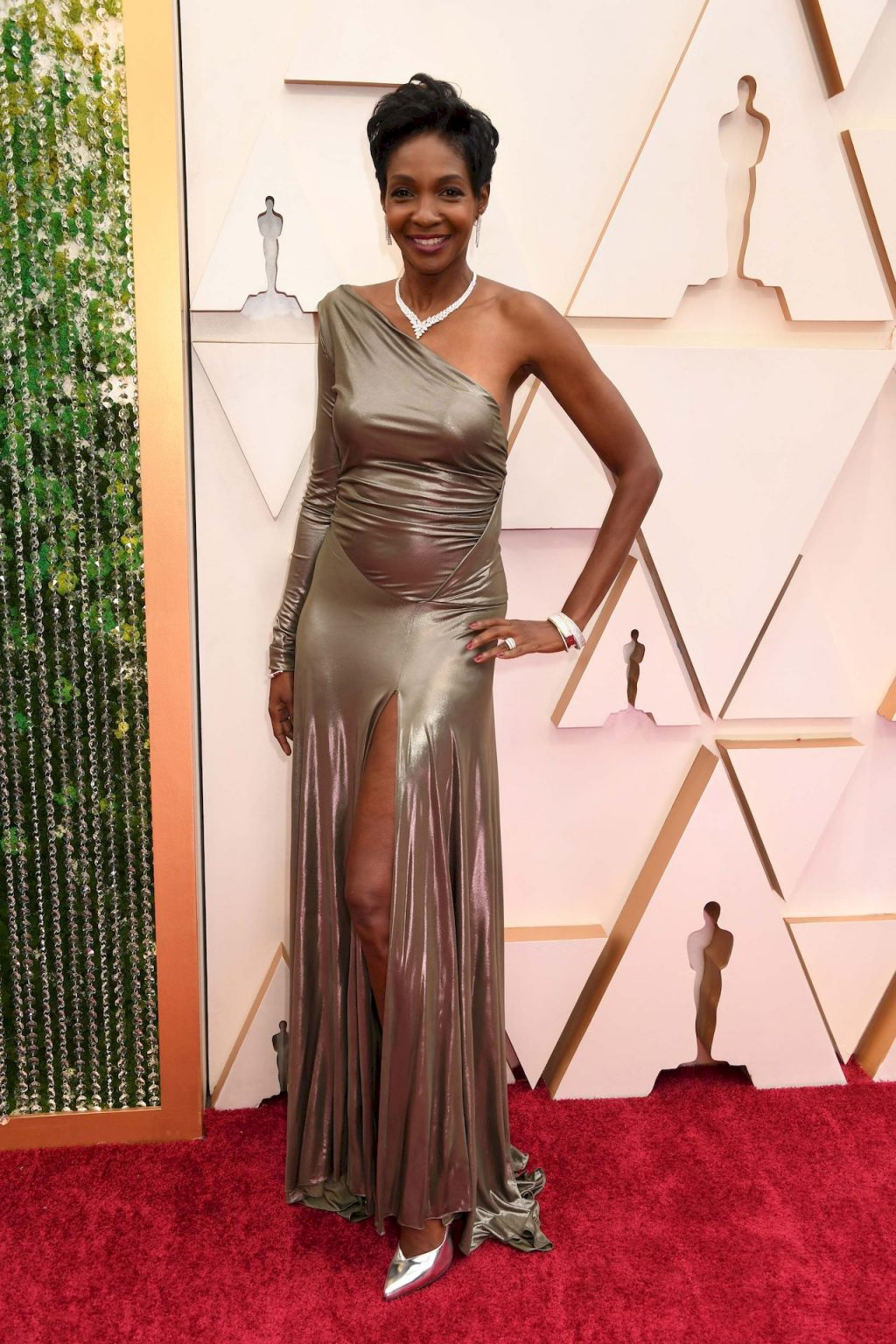 Roshumba Williams Shows Her Pokies at the 92nd Annual Academy Awards (7 Photos)