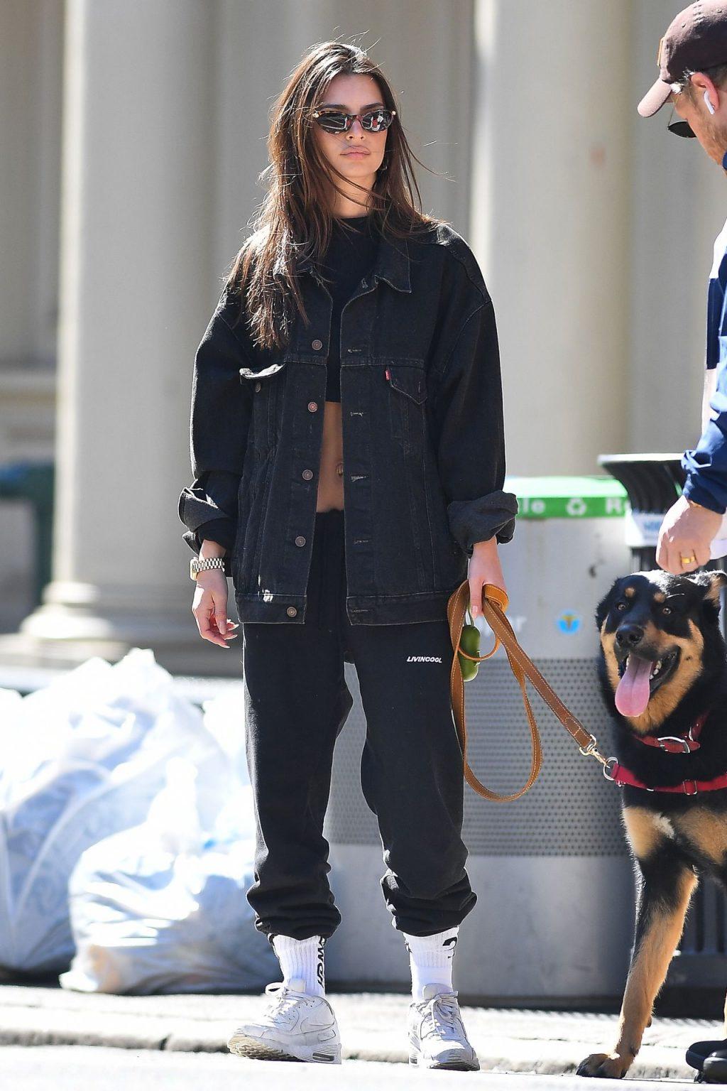 Emily Ratajkowski Walks With Her Dog Colombo in NYC (38 Photos)