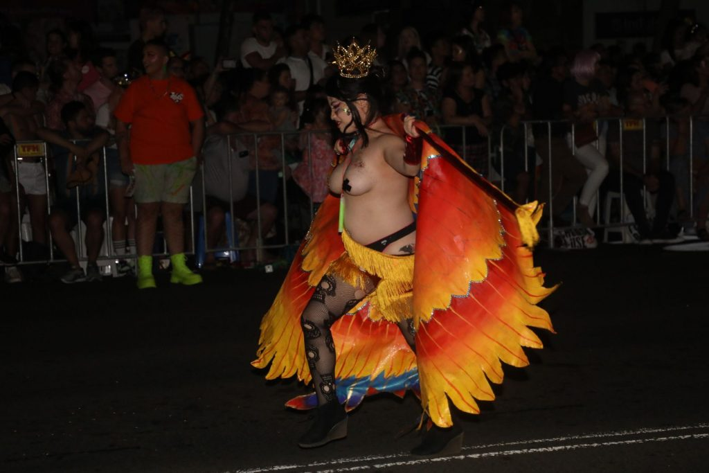 Topless Women Spotted in Sydney Gay and Lesbian Mardi Gras Parade (17 Photos)
