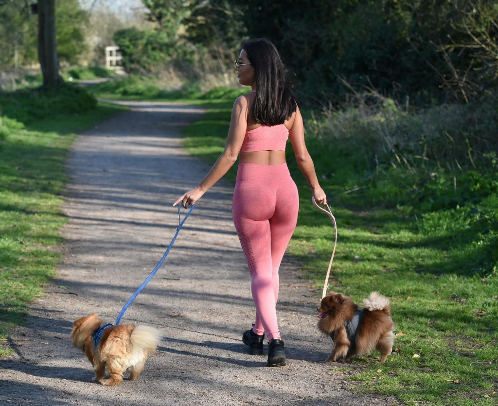 Busty Yazmin Oukhellou is Seen Walking Her Dogs in Harlow (12 Photos)