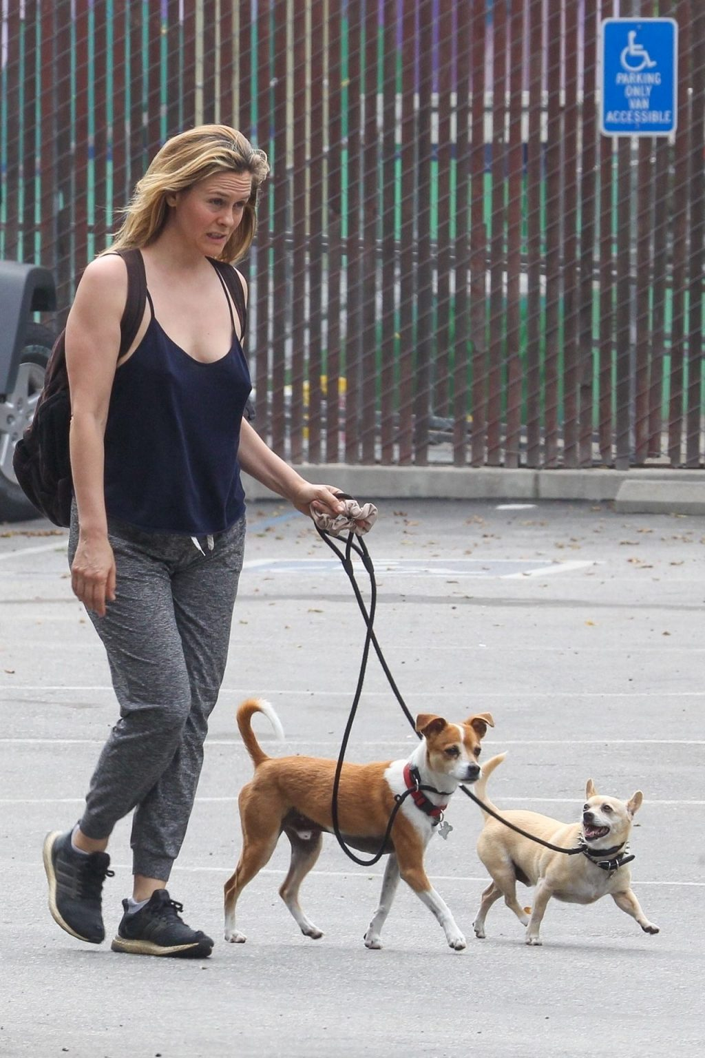 Alicia Silverstone Goes Braless While Walking with Her Dogs (37 Photos)