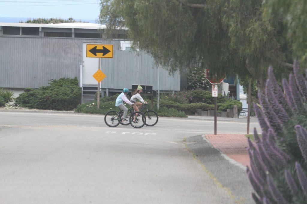 Dakota Johnson & Chris Martin Take His Kids Out for a Bike Ride in Malibu (58 Photos)