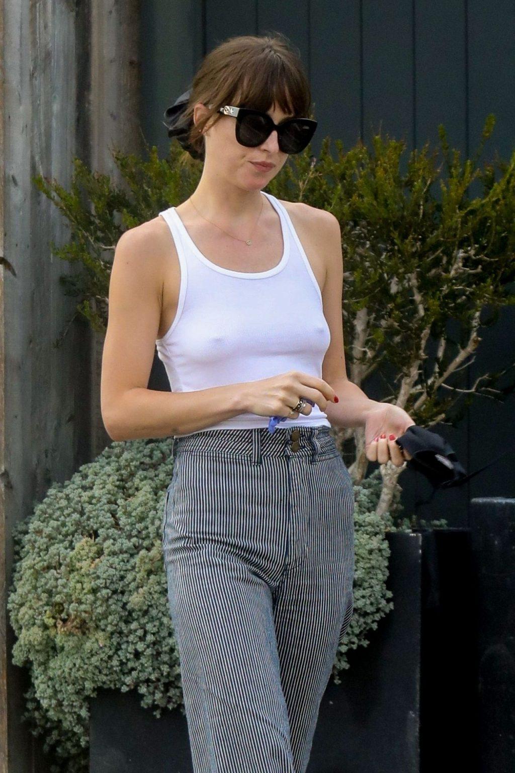 Dakota Jonhson Goes Grocery Shopping on a Nippy Day in Malibu (20 Photos)